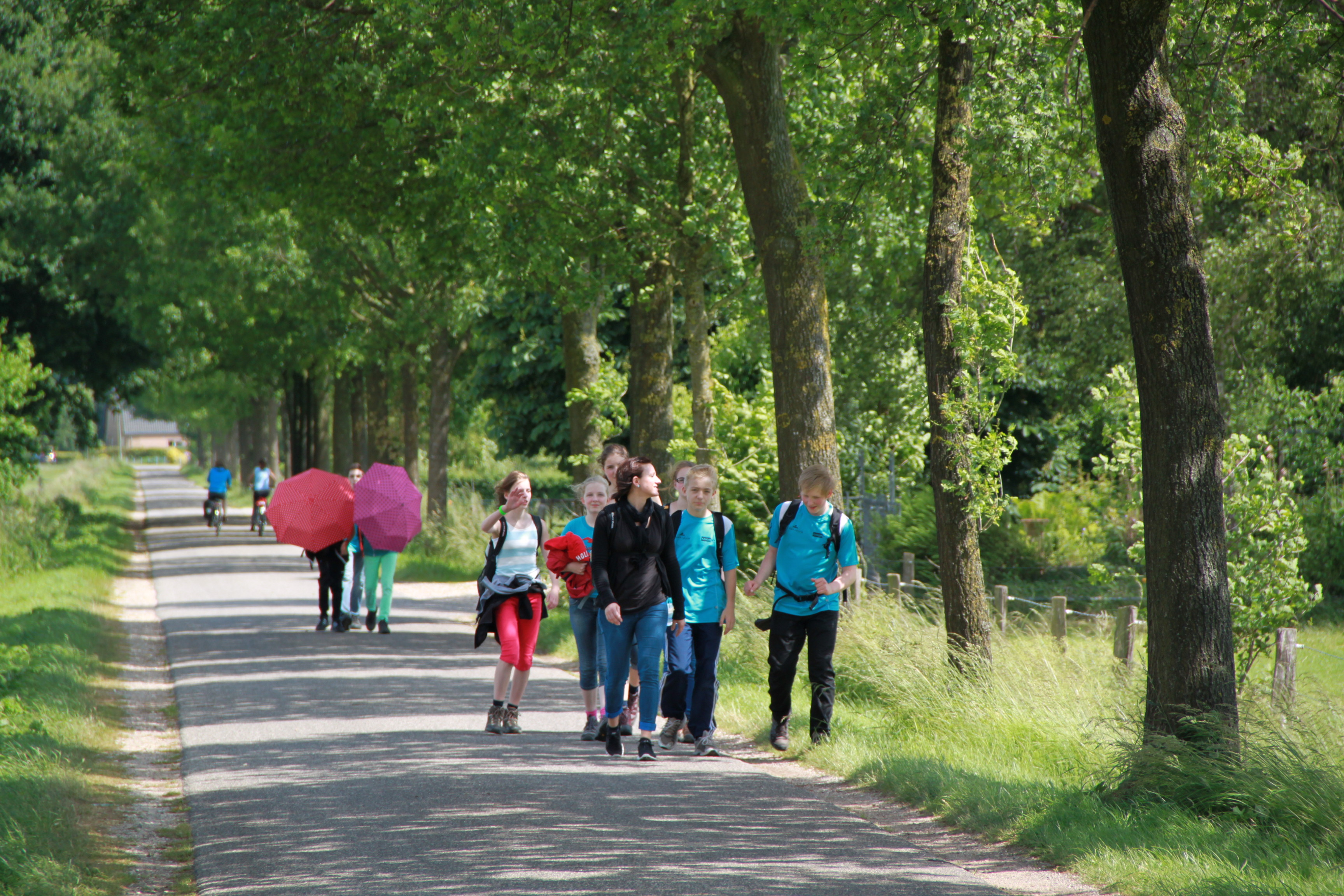 30 km an einem Tag geschafft! – Vierdaagse-Gruppe trainiert fleißig
