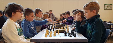 Siege bei Kreismeisterschaften im Schach